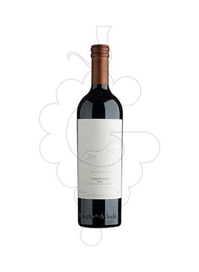 Foto Taberner vi negre
