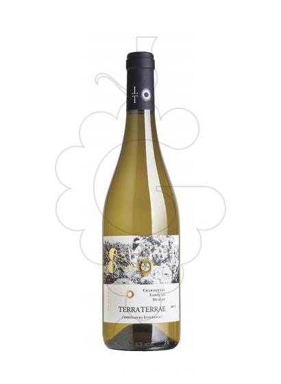 Foto Terra Terrae Blanc vi blanc