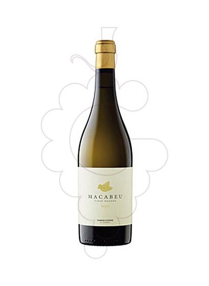 Foto Tomàs Cusiné Finca Racons vi blanc