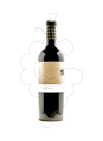 Foto Tomás Esteban Valderiz vi negre