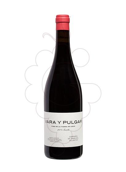 Foto Vara y Pulgar vi negre
