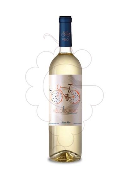 Foto Vélo Blanc vi blanc