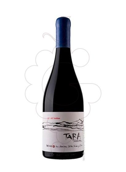 Foto Ventisquero Tara Red Wine 2 vi negre