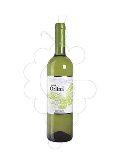Foto Vinya Orlina Blanc vi blanc