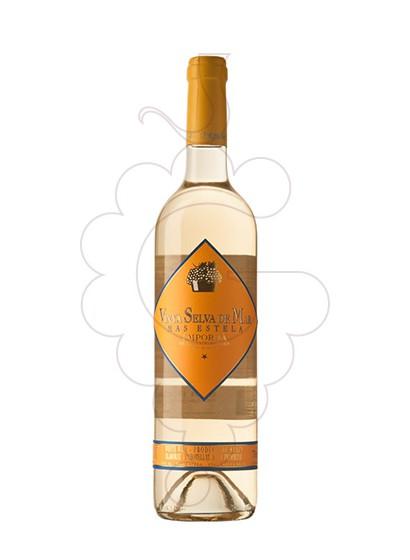 Foto Vinya Selva de Mar Blanc vi blanc